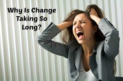 Why Is Change Taking So Long?