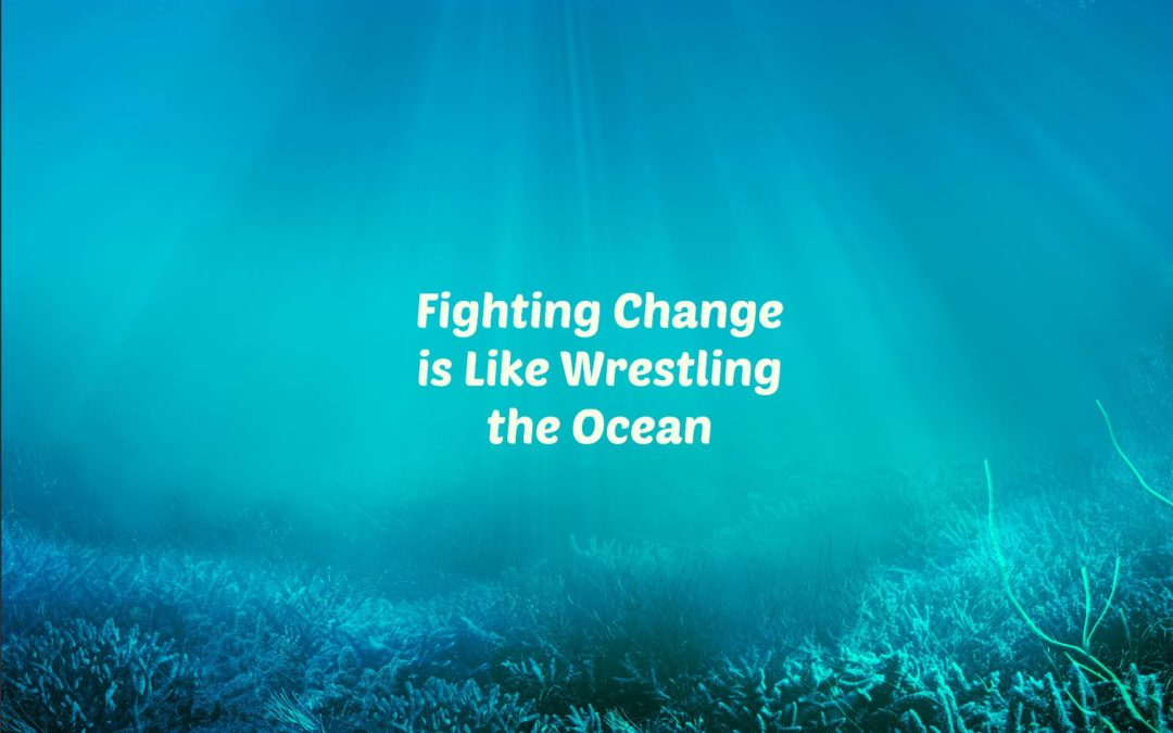 Fighting Change is Like Wrestling the Ocean